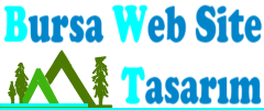 Bursa Web Site Tasarım Tel:546-940 2175